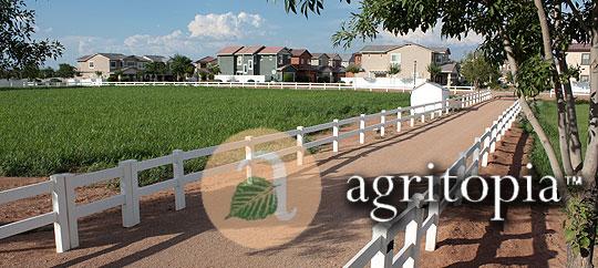 Agritopia Gilbert Arizona Search Gilbert AZ Homes For Sale Search Gilbert